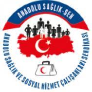 Anadolu Sağlık Sen